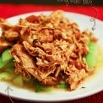 Crock Pot Salsa Shredded Chicken Breast (gluten free)