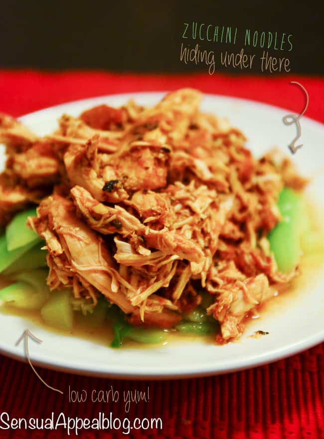 Crock Pot Salsa Shredded Chicken Breast (gluten free)