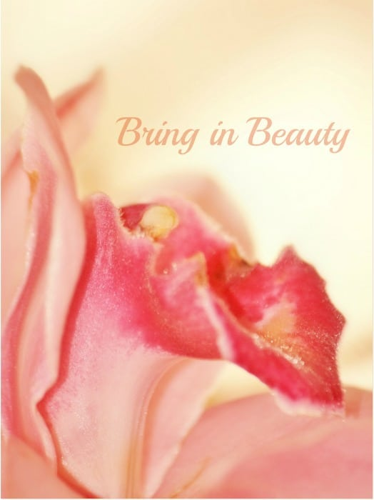 bringinbeauty