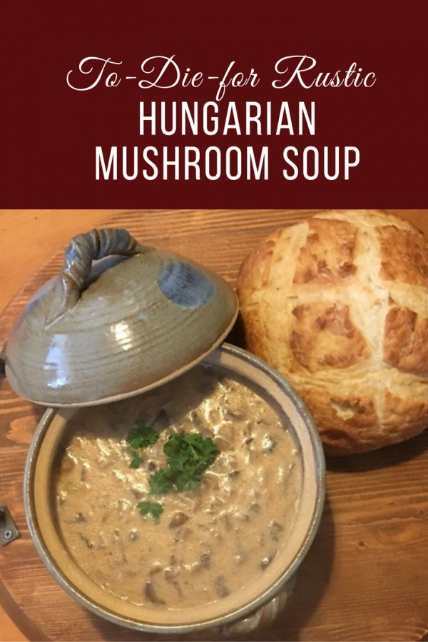 Get the recipe To-Die-for Rustic Hungarian Mushroom Soup @recipes_to_go