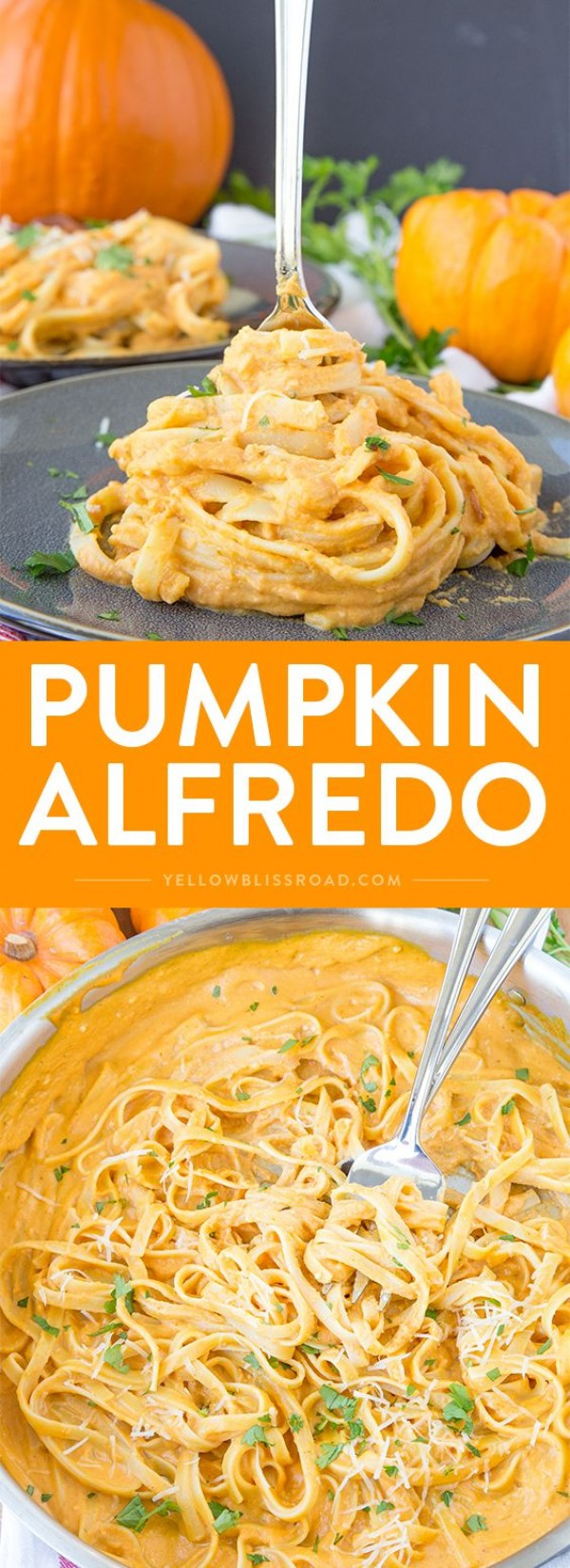 Get the recipe Pumpkin Alfredo @recipes_to_go