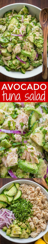 50 Best Healthy Salad Recipes Ever - Check out this recipe for an avocado tuna salad. Yummy! #RecipeIdeas @recipes_to_go