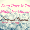 How Long Does It Take To Make Ice Cubes_ (1)